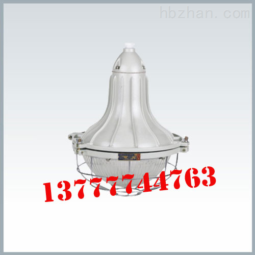 BGL250增安型防爆道路灯丨防爆灯生产厂家