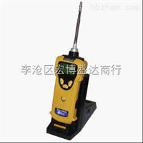 SearchRAE泵吸式可燃气检测仪PGM-1600