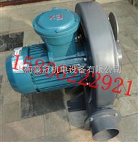 防爆气泵/防爆吸风机-防爆高压气泵