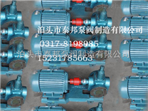 独特工艺生产圆弧齿轮泵YCB-1.6/0.6