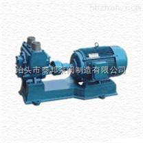 65YHCB-25 圆弧齿轮泵