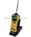 美国华瑞PGM-1600三合一检测仪