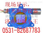 RBK-6000防爆型氨气报警器