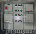 防爆照明(动力)配电箱BXM(D)51