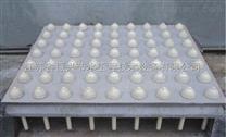LB平板钢模浇制滤板
