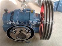 专业生产 LCW型罗茨泵
