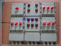 BXM防爆照明动力配电箱(IIB