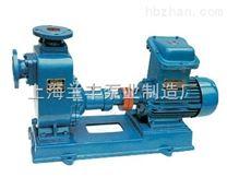 200CYZ-63防暴油泵 汽油泵
