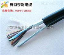 (硅橡胶)计算机电缆DJYP3V22阜阳