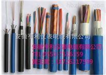 DJFVP3-22/计算机电缆/蚌埠电缆