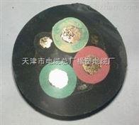 YC1*35橡套电缆