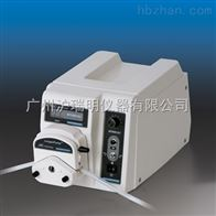 WT600-2J精密蠕動泵