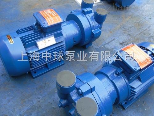 2BV2070水环式真空泵