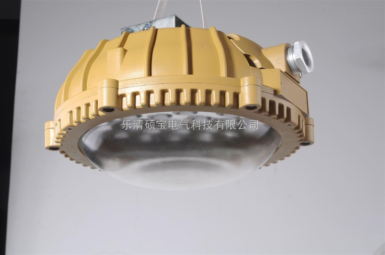 吸顶式防爆led灯 ccd96防爆免维护LED照明灯