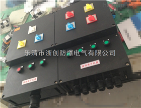 BXM8050-12/K防爆防腐照明配电箱