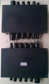 BF28158-S-20/30DLXR防爆防腐接线箱