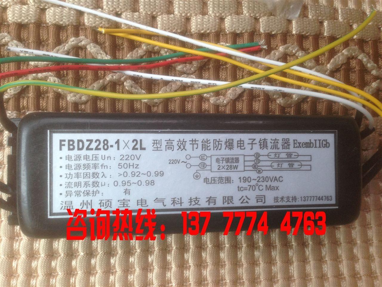 FBDZ28-1X2L高效节能防爆电子镇流器