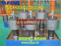 山东泰丰厂家直销TLCF40系列电反馈比例节流阀