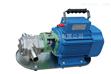 温州品牌WCB手提式齿轮油泵