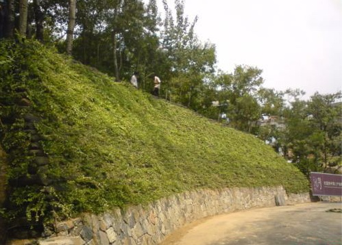 道路绿化工程护坡袋厂家直销