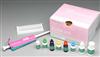 绵羊主要组织相容性复合体(MHC)ELISA试剂盒